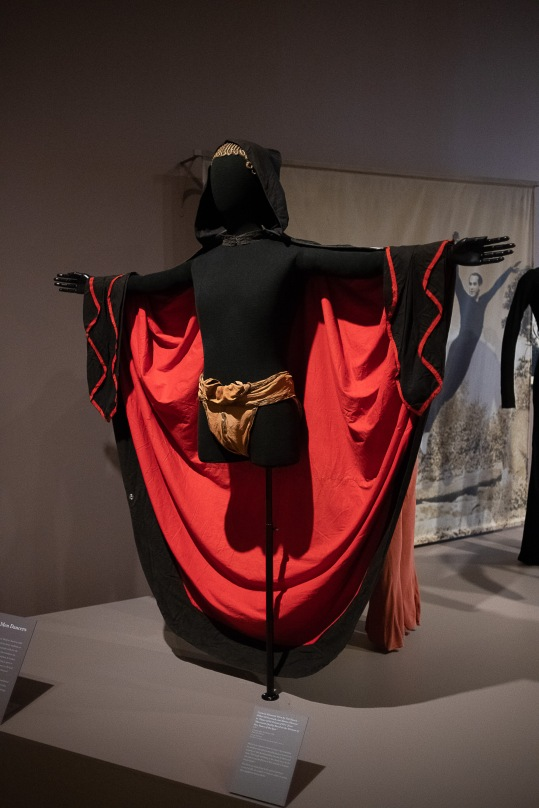 WilliamsCollegeCostumeExhibit-DanceWeMust_2018cDuggan_002
